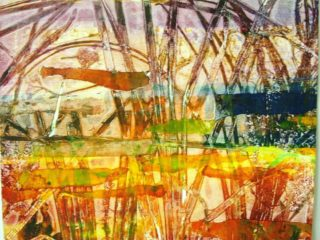 Berkshire Wetland